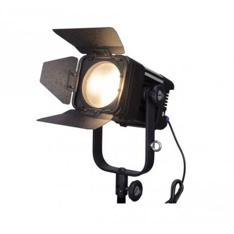 LEDGO - Projector Fresnel BI-COLOR 30W